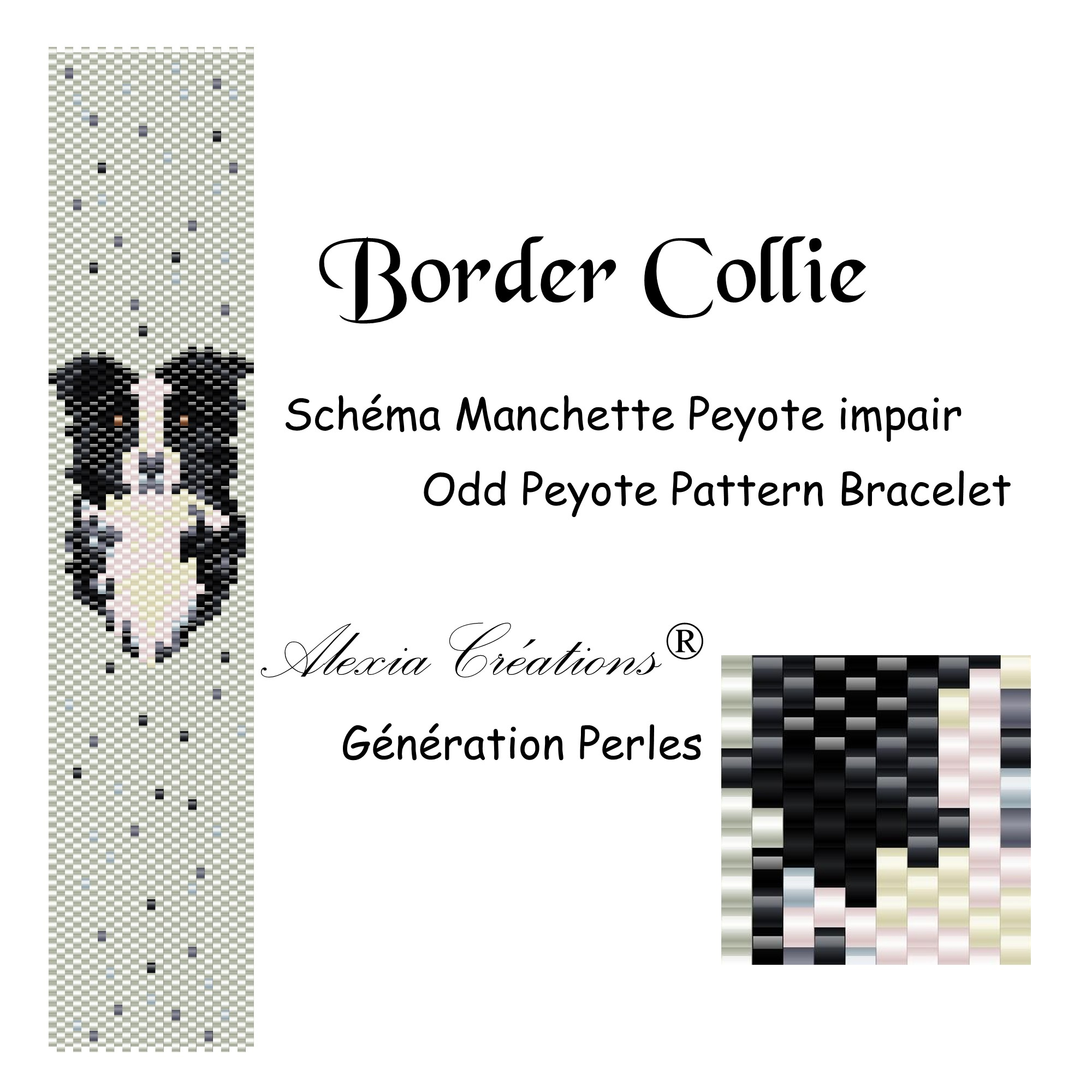 Manchette peyote impair Border Collie